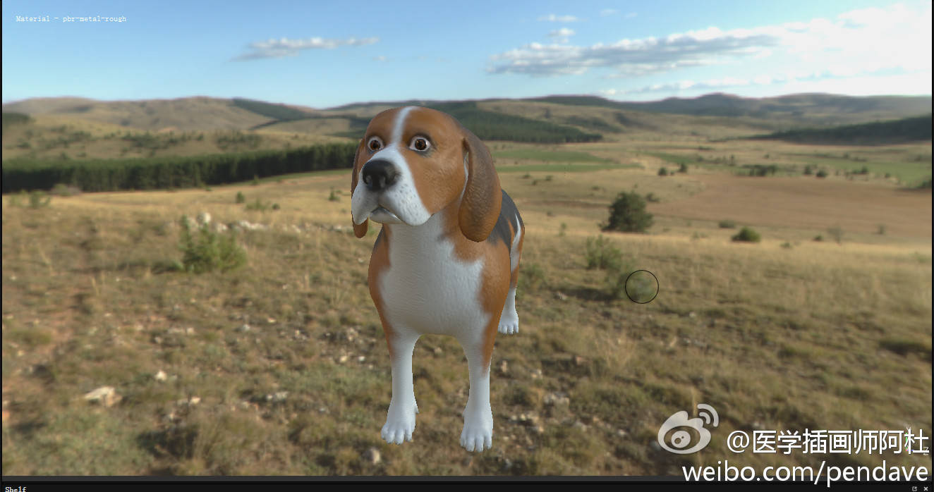 Texture painting for the 3D beagle model